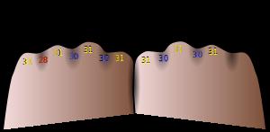 Months - Knuckles Mnemonic - wiki