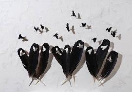 intricate-feather-cutouts-chris-maynard-10